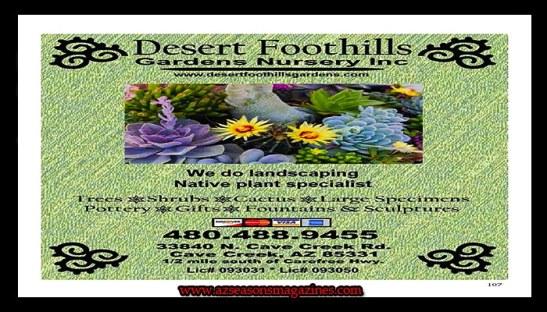 DESERT FOOTHILLS GARDEN NURSERY INC #desertfoothillsgardennursery #desertfoothillsgardensnursery#arizona #nursery#plants #vegetables #herbs #pots #fertilizer #shops #garden #homeimprovements #az #gardening #landscaping #gardener #giftshop #gardenparty #store #buy #products #grow #growing #planting #cavecreekaz #advertisingarizona #marketingagency #audience #director #networking #media #marketing #advertisingaz #picture #pic #KalvinArailias #azseasonsmagazines #phoenixarizona #phoenixaz #scottsdalearizona #paradisevalleyarizona #fountainhillsarizona #tempearizona #mesaarizona #glendalearizona #yumaaz #globearizona #prescottarizona #showlowarizona #tucsonarizona #MaricopaArizona #gilbertaz
